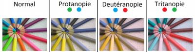 daltonisme.png